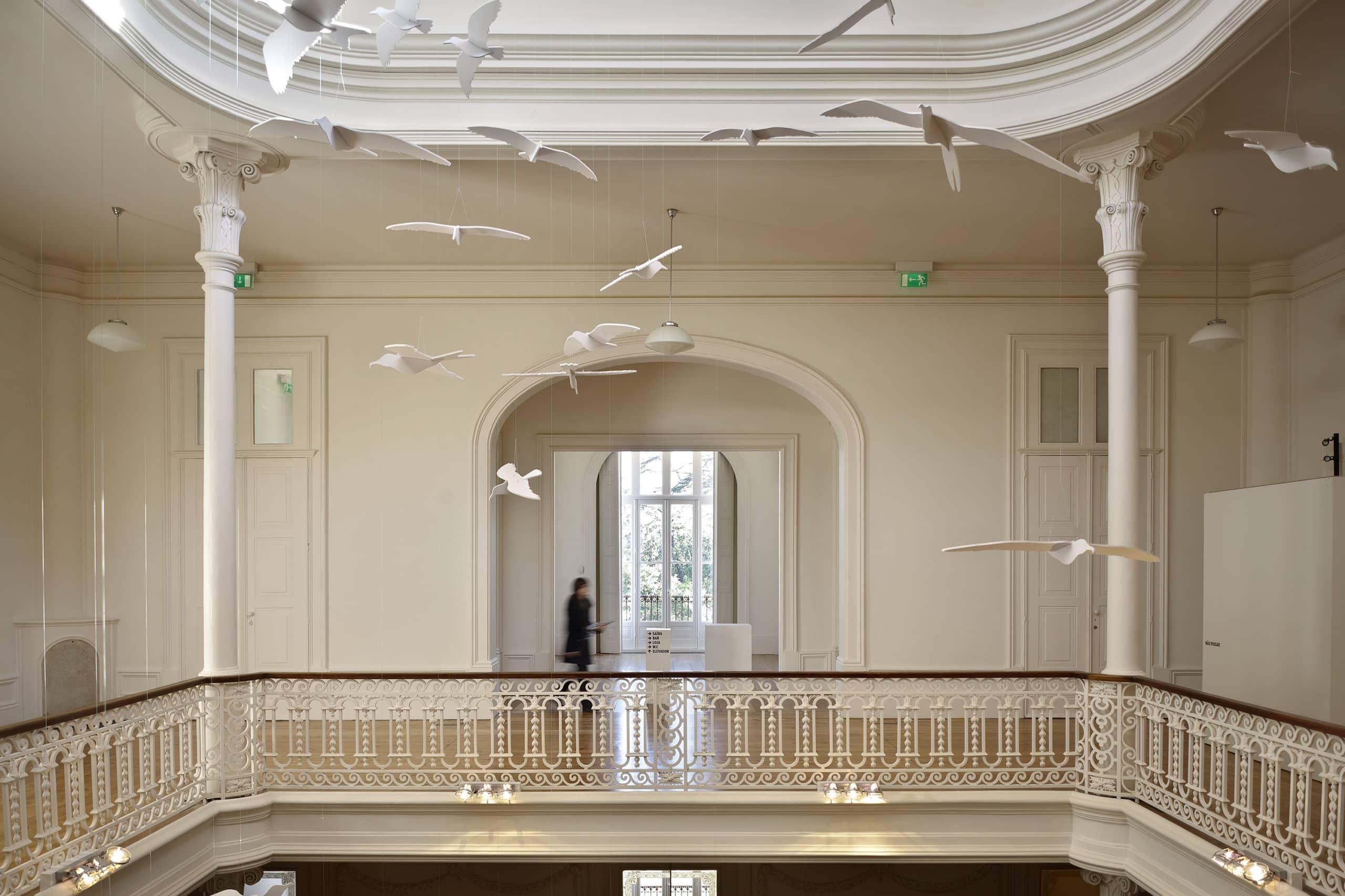 Casa Andresen Exposição - A Evolução de Darwin